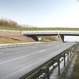 Eco-pont sur l'A64  (40)